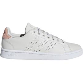 Pantofi Adidas Advantage W F36480 maro