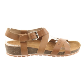 Big Star maro Pantofi mari de cămașă pentru femei 274A010