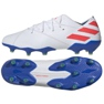Cizme de fotbal adidas Nemeziz Messi 19.1 Fg M F34402