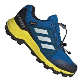 Albastru Pantofi Adidas Terrex Gtx Jr BC0599