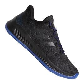 Pantofi Adidas Harden B / EXM F97250