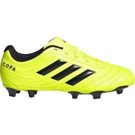 Pantofi de fotbal Adidas Copa 19.4 Fg Jr F35461
