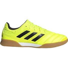 Pantofi de interior Adidas Copa 19.3 În Sala M F35503
