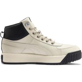 Pantofi Puma Tarrenz Sb Puretex M 370552 03 maro