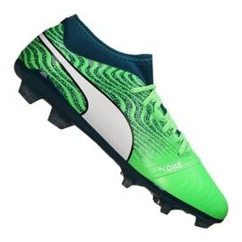 Cizme de fotbal Puma One 18.2 Fg M 104533-04 verde verde