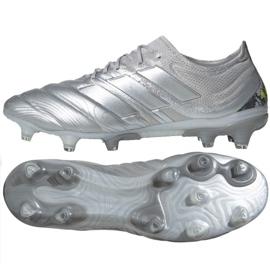 Pantofi de fotbal Adidas Copa 20.1 Fg M EF8316 argint