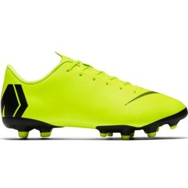 Pantofi de fotbal Nike Mercurial Vapor 12 Academy Mg Jr AH7347 701 negru, verde
