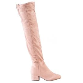 Fashion Muschetarii cu pulbere roz