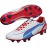 Puma Evo Speed 1 Fg M 102527 01 pantofi de fotbal alb alb 1