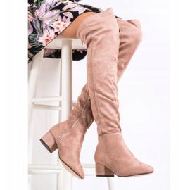 Fashion Muschetarii cu pulbere roz 2