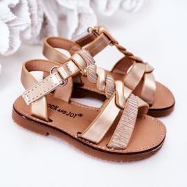 FR1 Sandale pentru copii cu brodat Golden Batilda de aur 5